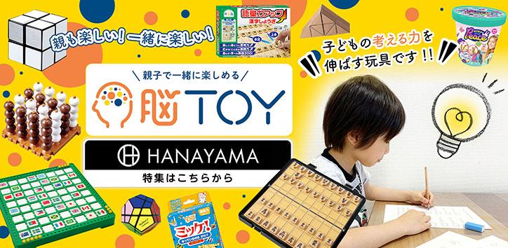 hanayama-724x354.jpg